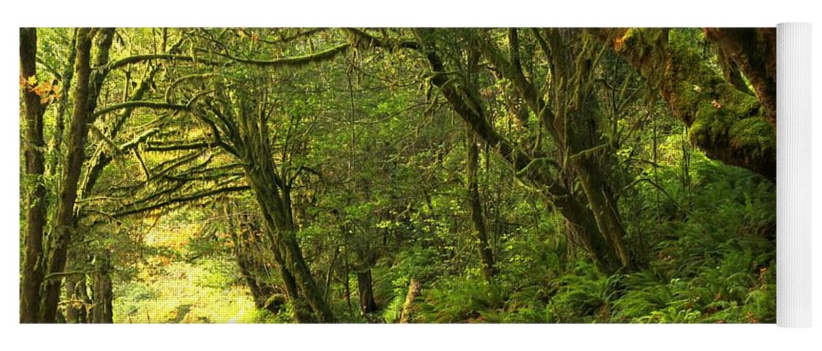 Oregon Rainforest Yoga Mat featuring the photograph Subaru In The Rainforest by Adam Jewell