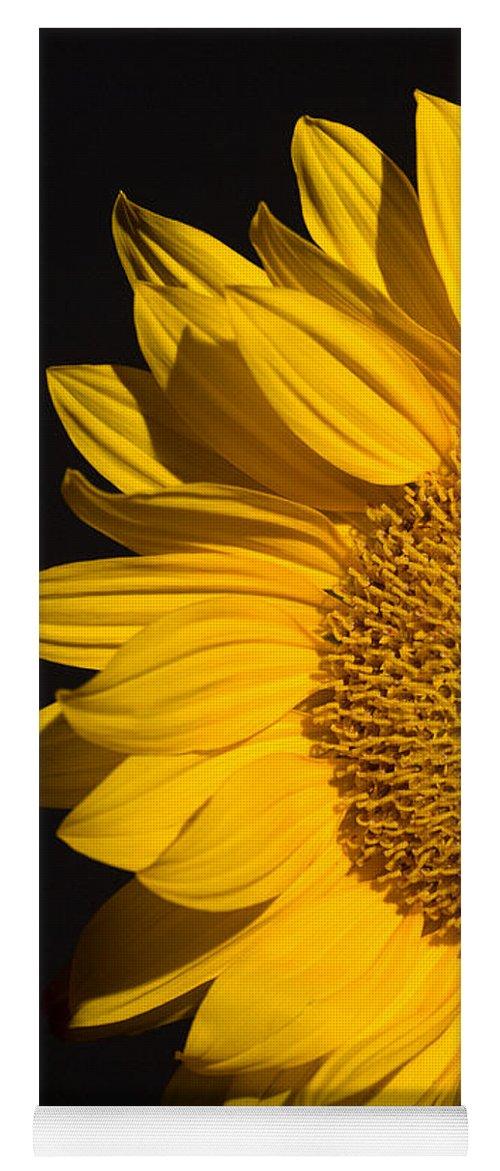 Sunflowers Yoga Mat featuring the photograph Sunflower by Mark Ashkenazi