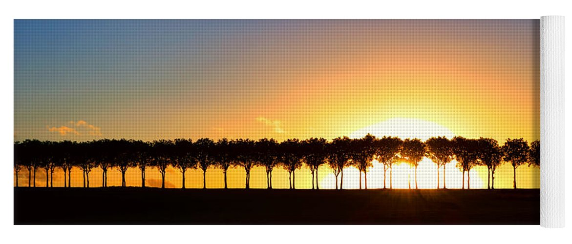 France Yoga Mat featuring the photograph Sunset Over Tree Lined Road by Olivier Le Queinec