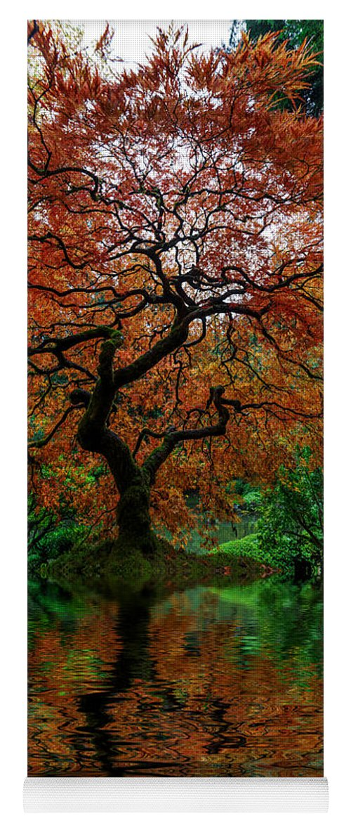 Swamped Japanese Maple Yoga Mat featuring the photograph Swamped Japanese by Wes and Dotty Weber