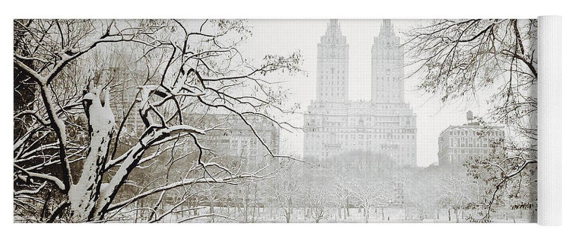 New York City Yoga Mat featuring the photograph Through Winter Trees - Central Park - New York City by Vivienne Gucwa