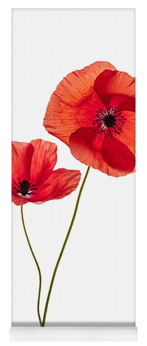Two Poppy Flowers Yoga Mat For Sale By Elena Elisseeva