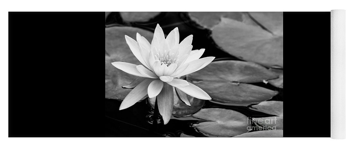 Landscape Yoga Mat featuring the photograph Water Lily In The Lily Pond by Sabrina L Ryan