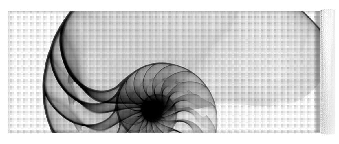 Radiograph Yoga Mat featuring the photograph X-ray Of Nautilus by Bert Myers
