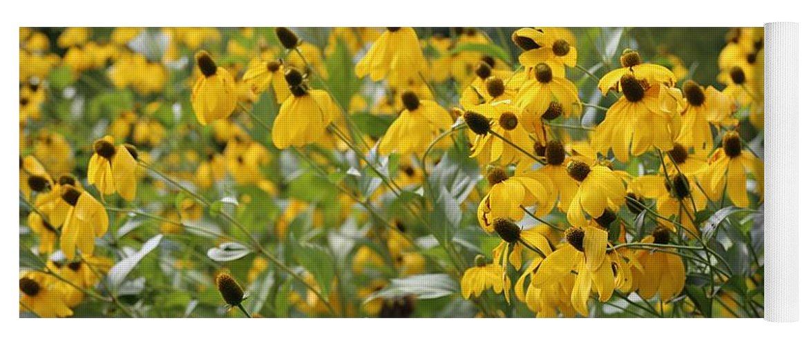 Dutch Garden Yoga Mat featuring the photograph Yellow Cone Flowers by Carol Groenen