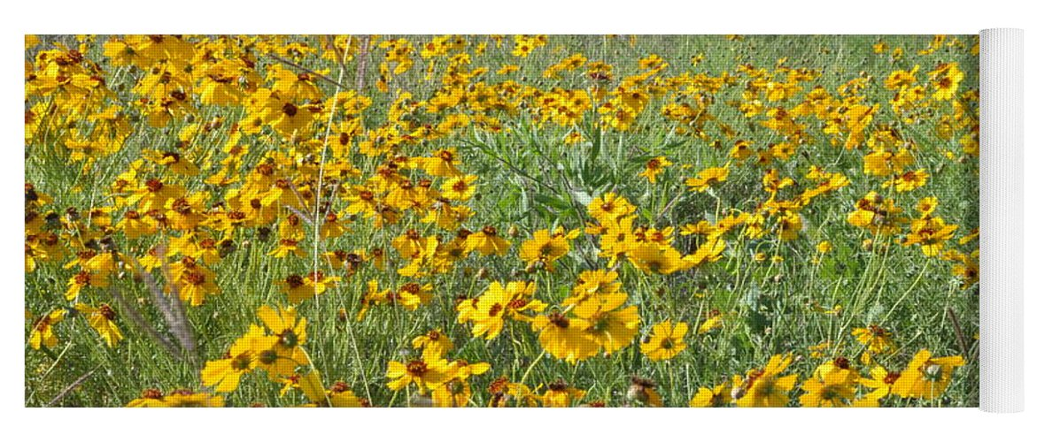 Yellow Yoga Mat featuring the photograph Yellow Flowers by Frank Madia