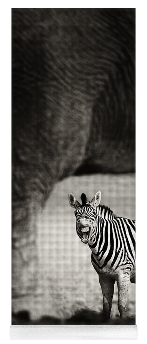 Wild Yoga Mat featuring the photograph Zebra Barking by Johan Swanepoel