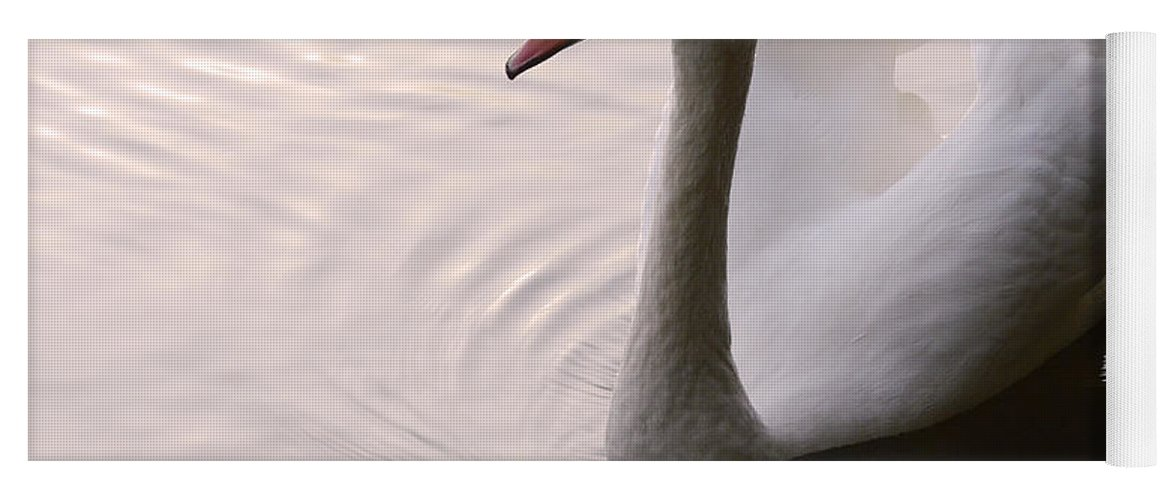 Swan Yoga Mat featuring the photograph Completely Elegant by Bob Christopher
