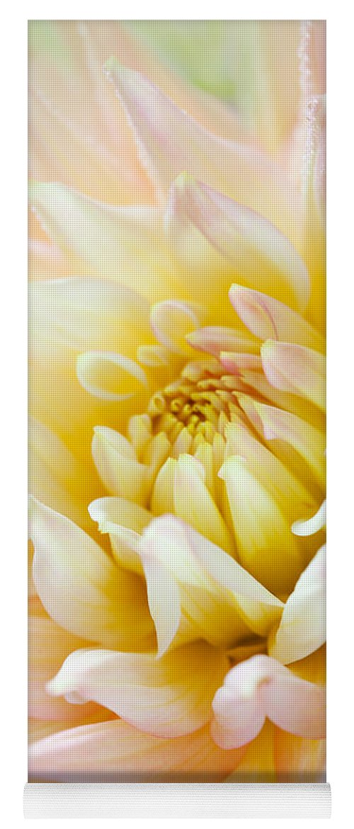 Dahlia Yoga Mat featuring the photograph Dahlia Flower 03 by Nailia Schwarz