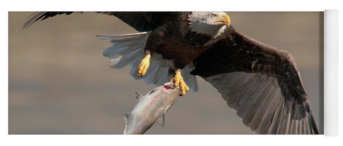 Bald Eagle Yoga Mat featuring the photograph Fish To Go by Craig Leaper