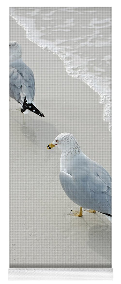 Gull Yoga Mat featuring the photograph Gulls At The Beach by Robert Meanor