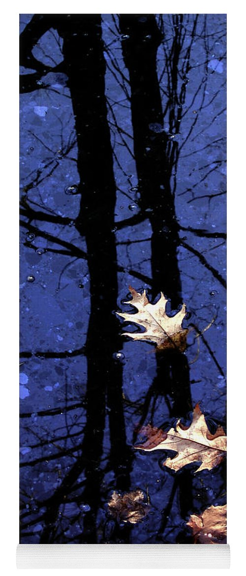 Leaves Yoga Mat featuring the photograph Midnight Stillness by Mike Nellums