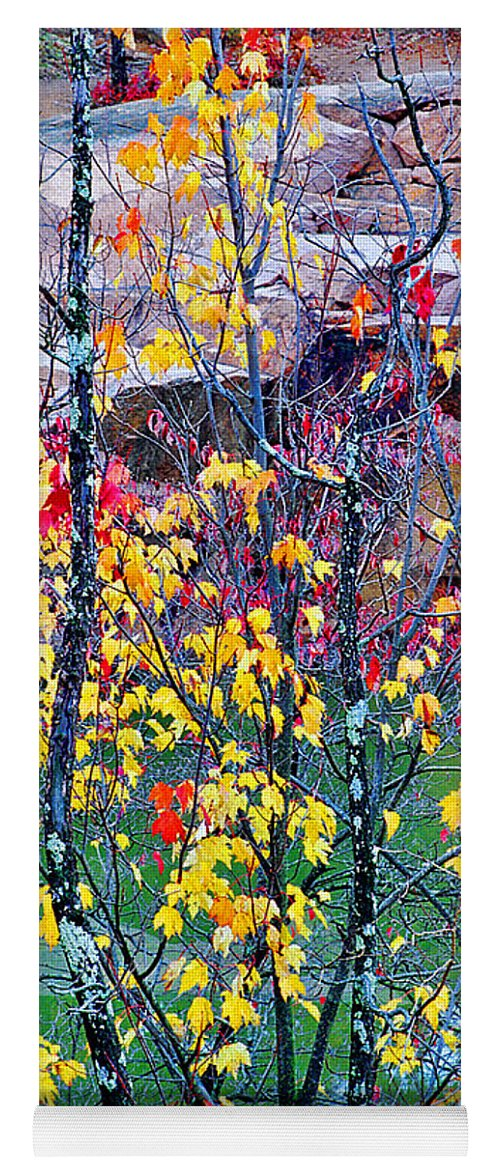 Trees Yoga Mat featuring the photograph Red And Gold In Quarry At Elephant Rocks State Park by Greg Matchick
