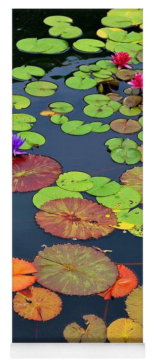 Garden Yoga Mat featuring the photograph Water Lilies I by Nancy Mueller