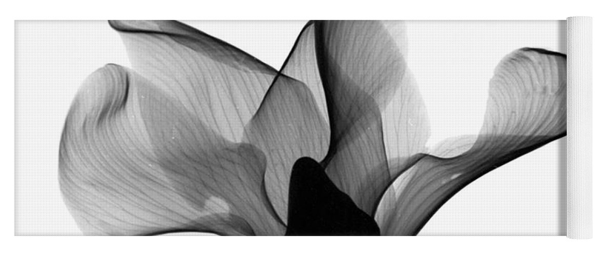 Nature Yoga Mat featuring the photograph Cyclamen Flower X-ray 2 by Bert Myers