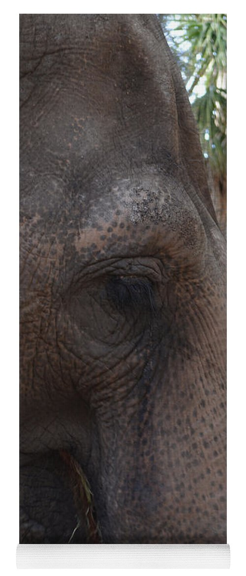 Elephant Yoga Mat featuring the photograph Gentle Giant by To-Tam Gerwe