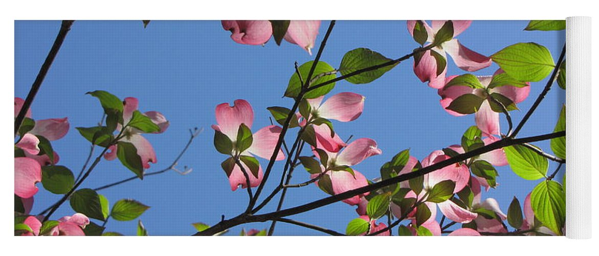 Tree Yoga Mat featuring the photograph Pink Dogwood by Sarah Houser