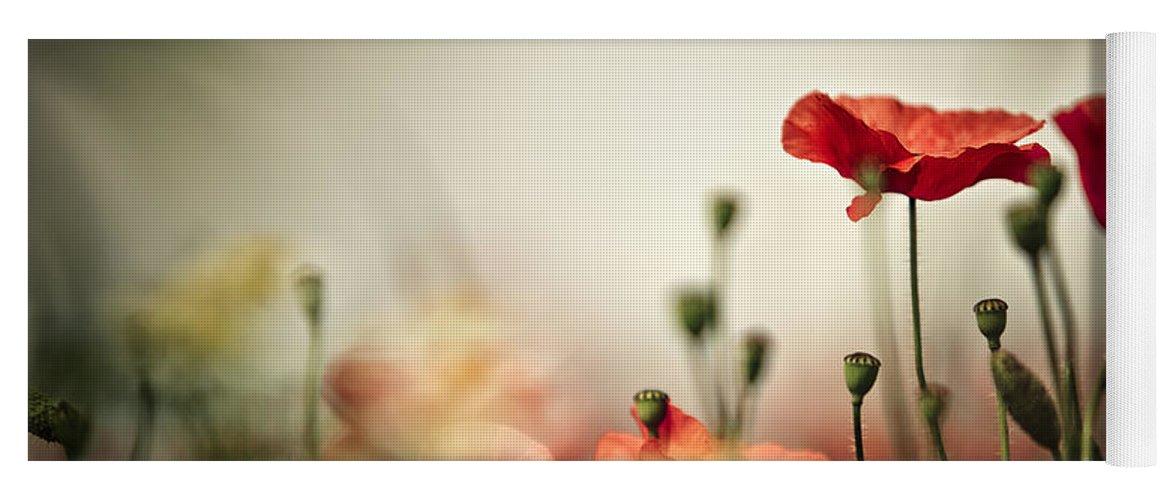 Poppy Yoga Mat featuring the photograph Poppy Meadow by Nailia Schwarz