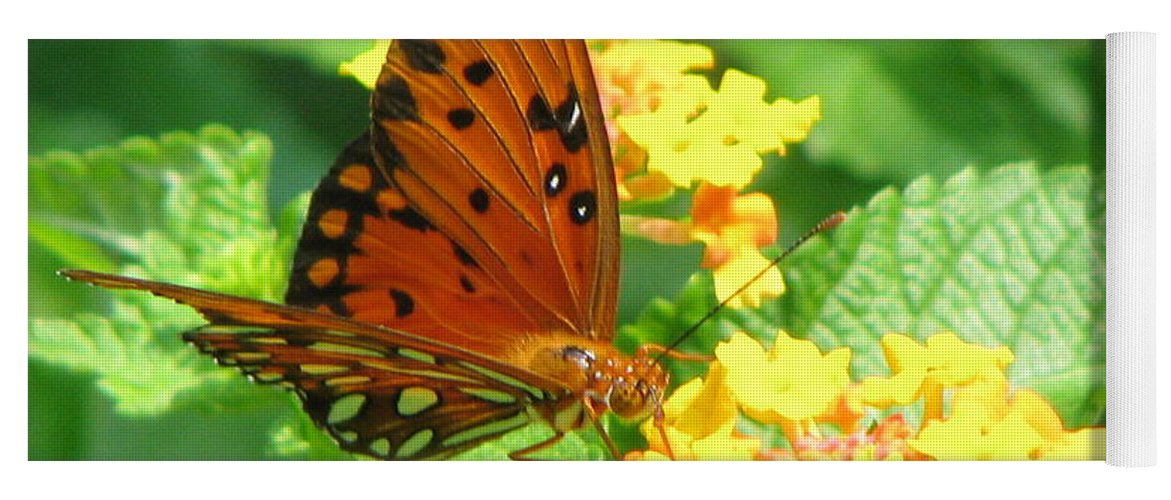 Butterfly Yoga Mat featuring the photograph Butterfly by Amanda Barcon