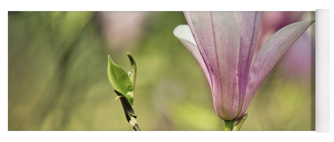 Magnolia Yoga Mat featuring the photograph Magnolia by Nailia Schwarz