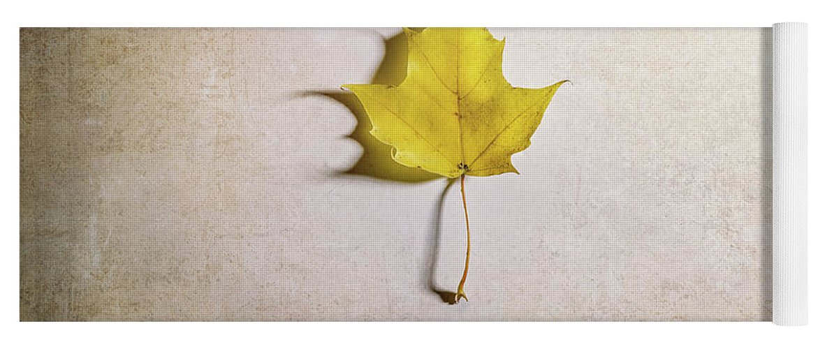 Maple Leaf Yoga Mat featuring the photograph A Single Yellow Maple Leaf by Scott Norris