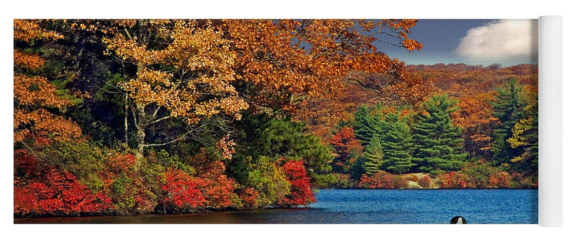 Fall Yoga Mat featuring the photograph Afternoon Swim by Susan Candelario