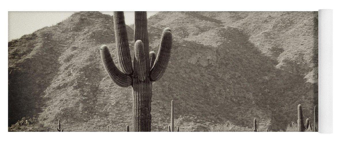 White Tank Sunset Yoga Mat featuring the photograph Arizona Desert by Methune Hively
