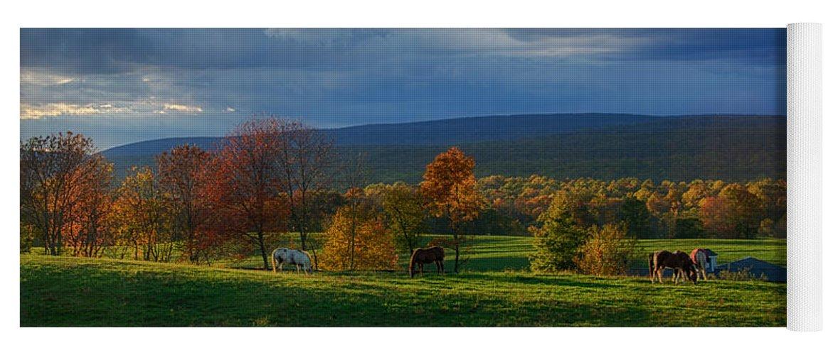 Farm Yoga Mat featuring the photograph Autumn Evening by Eleanor Bortnick