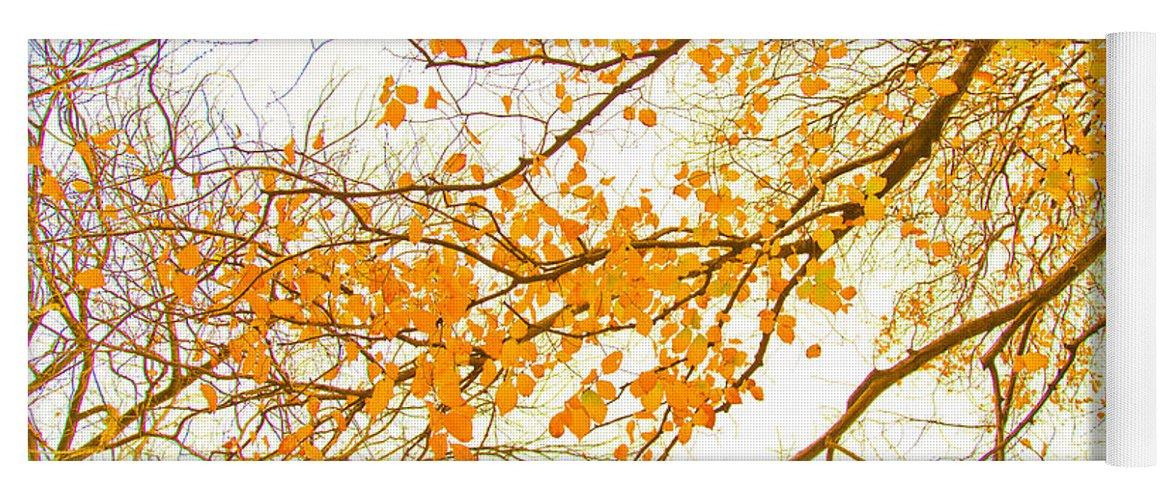 Spring Flowers Yoga Mat featuring the photograph Autumn Leaves by Az Jackson