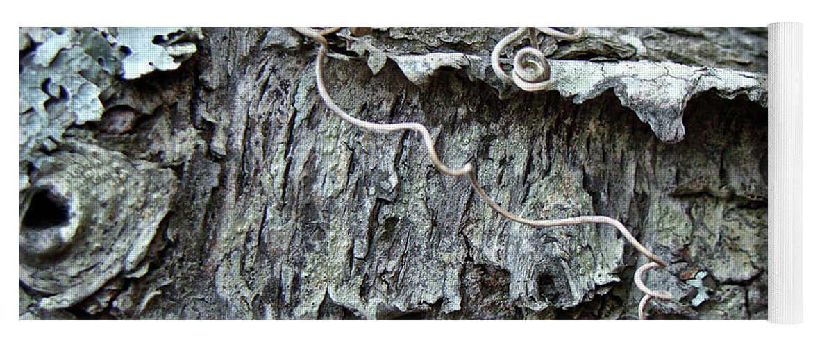 Tree Yoga Mat featuring the photograph Bark - Lichen - Cat Brier Tendrils by Mother Nature