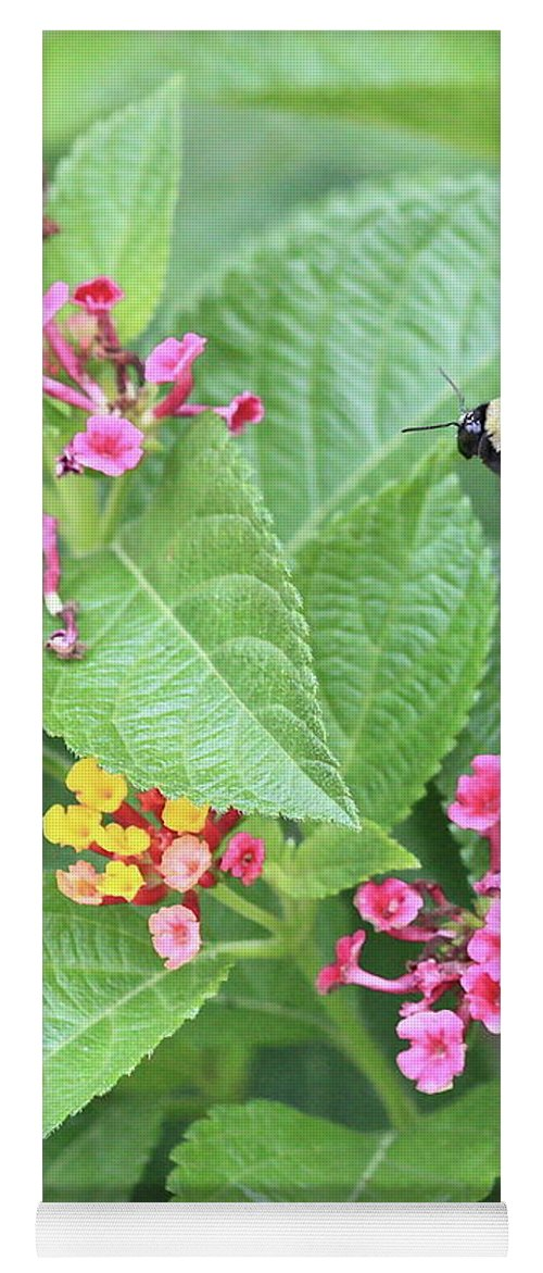 Bee Yoga Mat featuring the photograph Beeing Amongst The Flowers by Carol Groenen