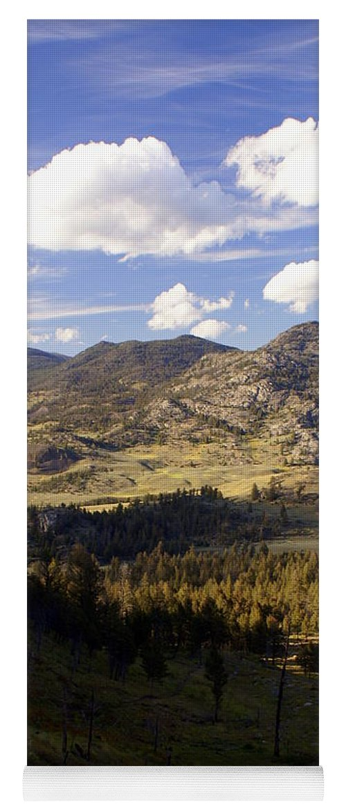 Yellowstone National Park Yoga Mat featuring the photograph Blacktail Road Landscape by Marty Koch