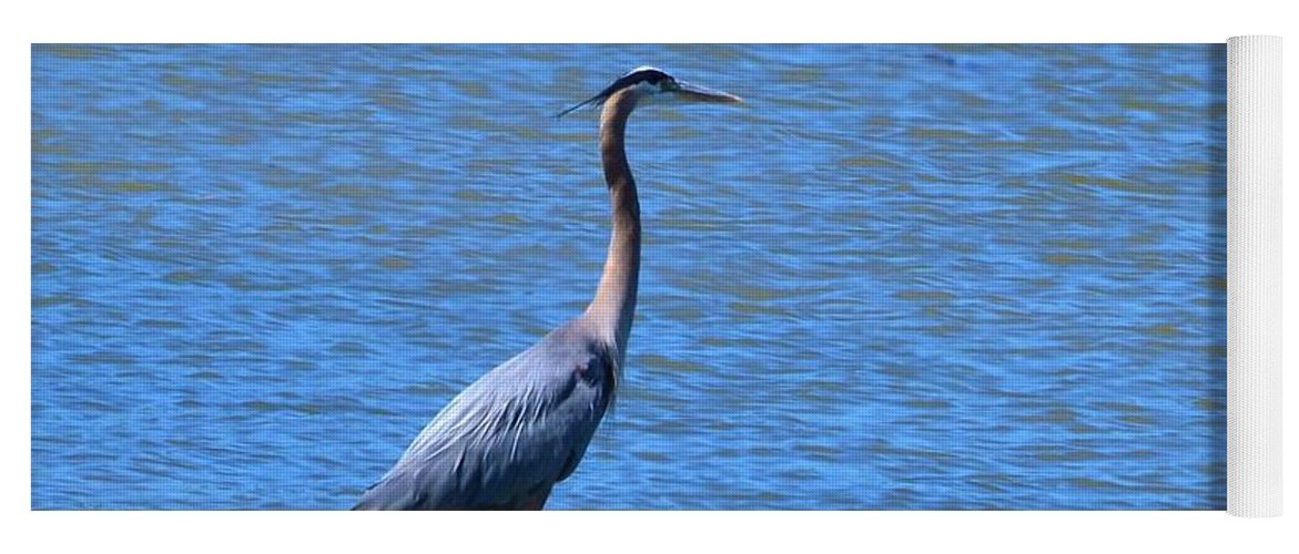 Heron Yoga Mat featuring the photograph Blue Heron by Eileen Brymer