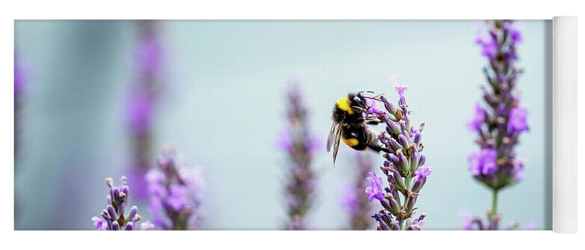 Lavender Yoga Mat featuring the photograph Bumblebee And Lavender by Nailia Schwarz
