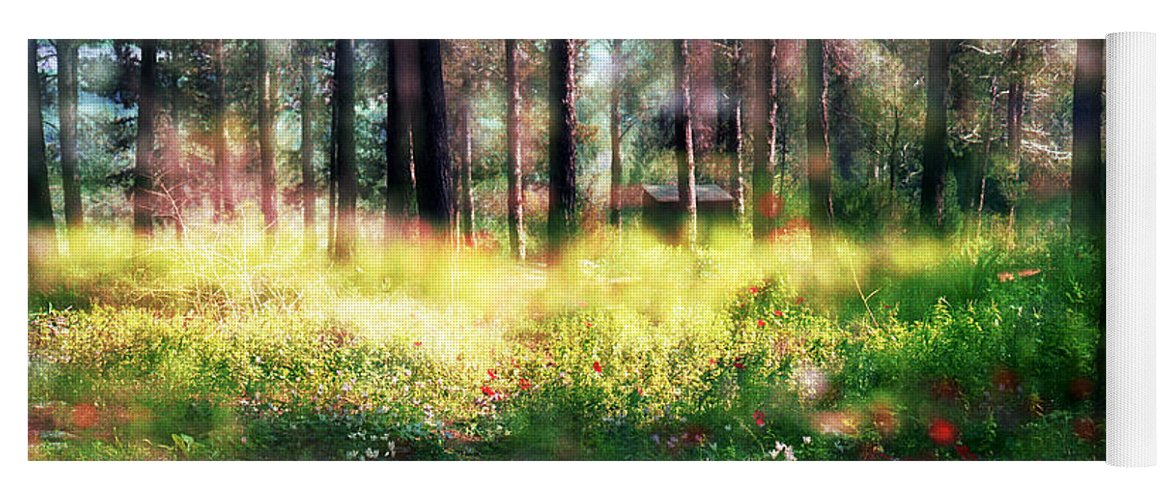Impressionistic Yoga Mat featuring the photograph Cabin In The Woods In Menashe Forest by Dubi Roman