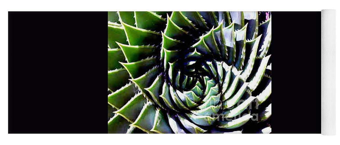 Cactus Yoga Mat featuring the photograph Cactus by Dragica Micki Fortuna