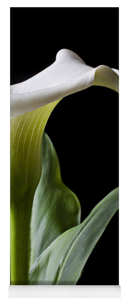 Calla Lily Yoga Mat featuring the photograph Calla Lily With Drip by Garry Gay