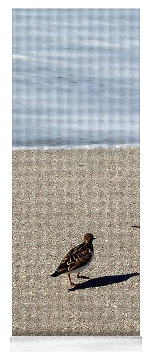 Beach Yoga Mat featuring the photograph Captiva Brids by Elizabeth Klecker