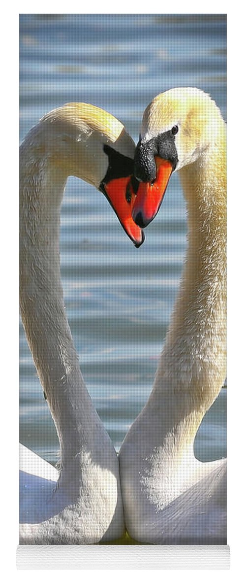 Swans Yoga Mat featuring the photograph Caring Swans by Carol Groenen