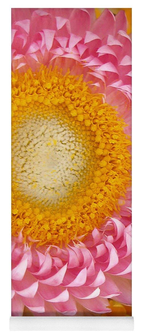 Flower Yoga Mat featuring the photograph Carmel Flower by Sarah Madsen
