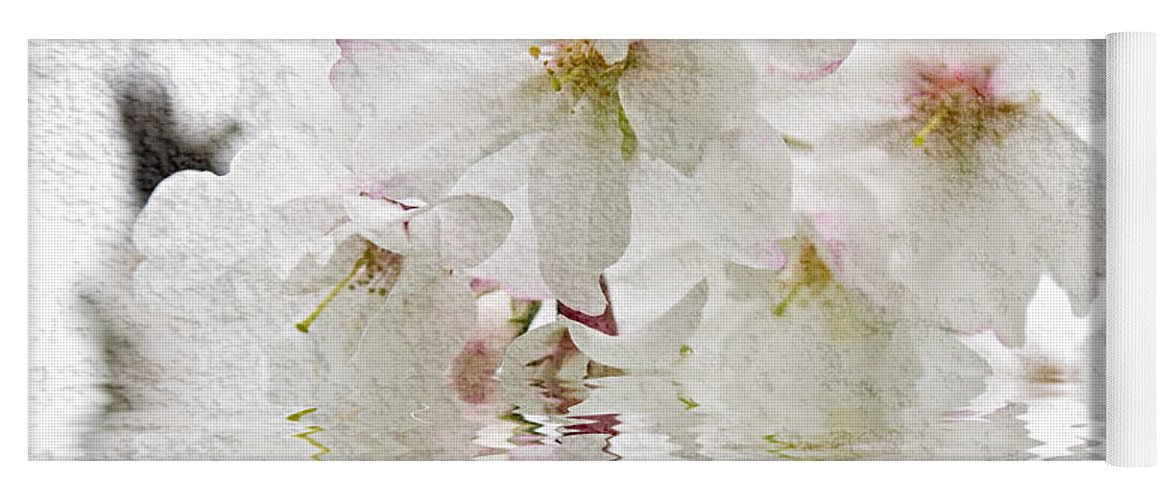 Blossom Yoga Mat featuring the photograph Cherry Blossom In Water by Elena Elisseeva