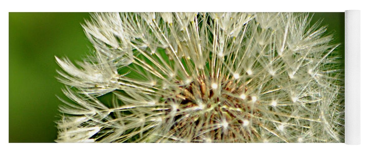 Dandelion Puff Yoga Mat featuring the photograph Dandelion Puff by Ally White