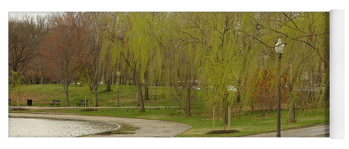 Landscape Park Washington Willow Tree Lake Yoga Mat featuring the photograph Dnrf0401 by Henry Butz