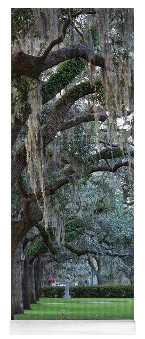 Carol Groenen Yoga Mat featuring the photograph Emmet Park In Savannah by Carol Groenen