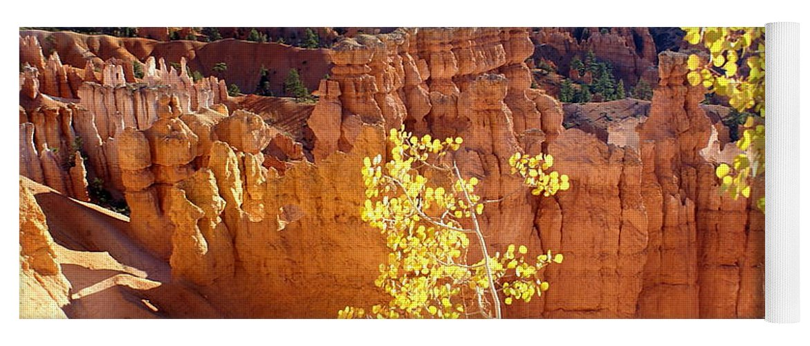 Bryce Canyon National Park Yoga Mat featuring the photograph Fall In Bryce Canyon by Marty Koch