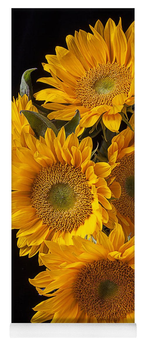 Five Yoga Mat featuring the photograph Five Sunflowers by Garry Gay