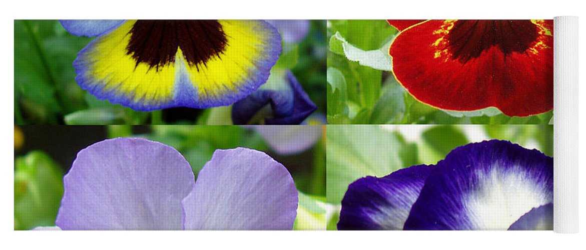 Pansy Yoga Mat featuring the photograph Four Pansies by Nancy Mueller