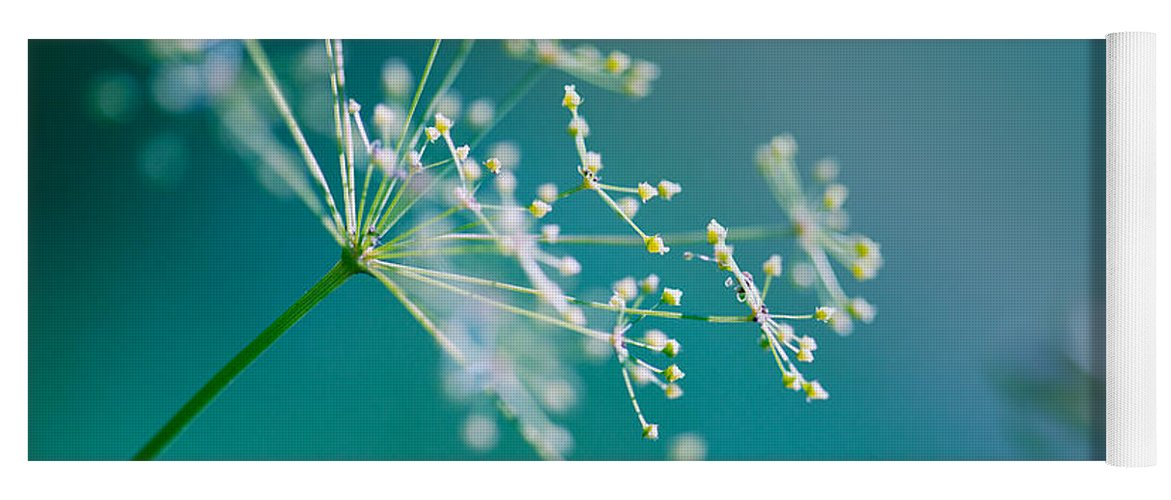 Dill Yoga Mat featuring the photograph Fragile Dill Umbels by Nailia Schwarz
