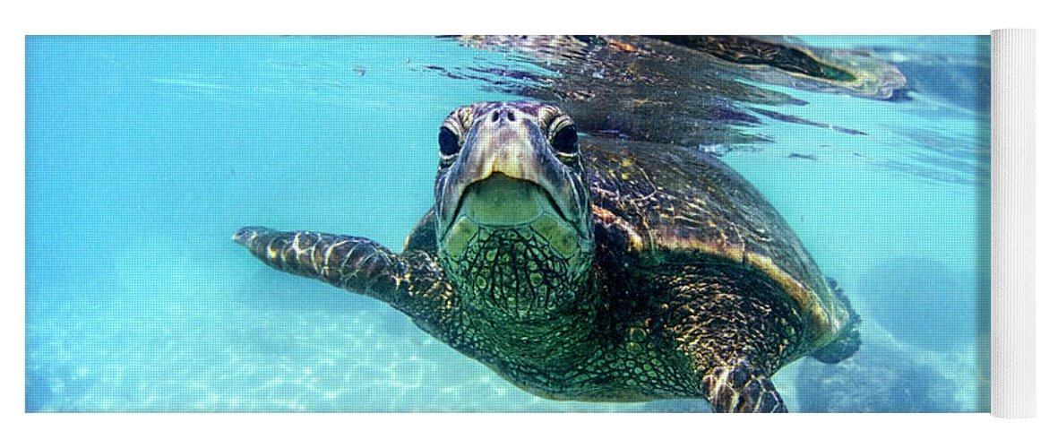 Sea Yoga Mat featuring the photograph friendly Hawaiian sea turtle by Sean Davey