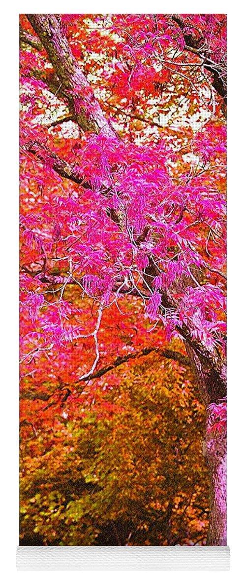 Fuschia Yoga Mat featuring the photograph Fuschia Tree by Nadine Rippelmeyer